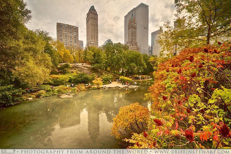 Buildings Above The Park - Central Park In The Fall