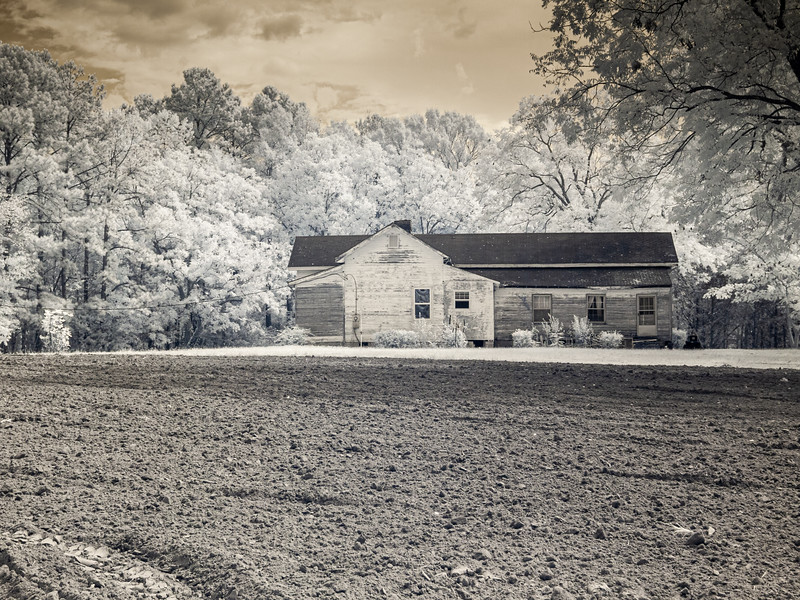Just across the street from Ivey's Chapel church is the farm where my mother used to spend her summers as a little girl.