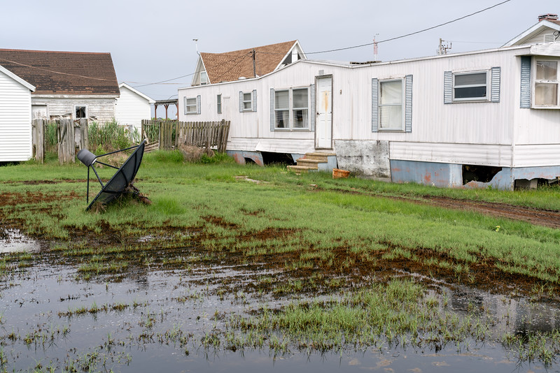 Many yards are like this...always wet and soggy, even under water at high tide.