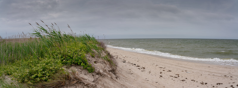 A cloudy, windy day at the beach.