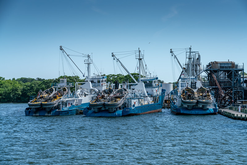 This fishing fleet is owned by a company called Omega Protein.