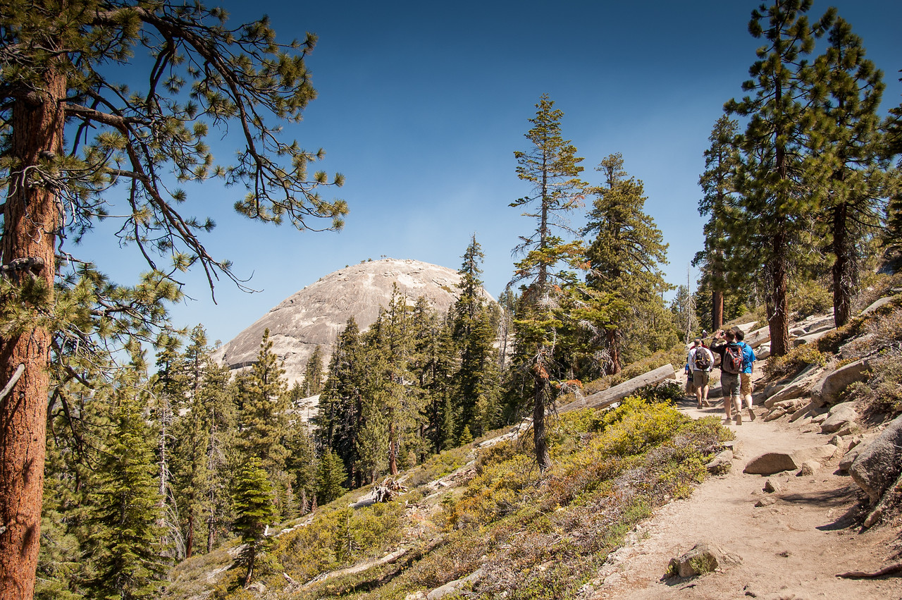 We begin the day with an easy but spectacular hike to Sentinal Dome.