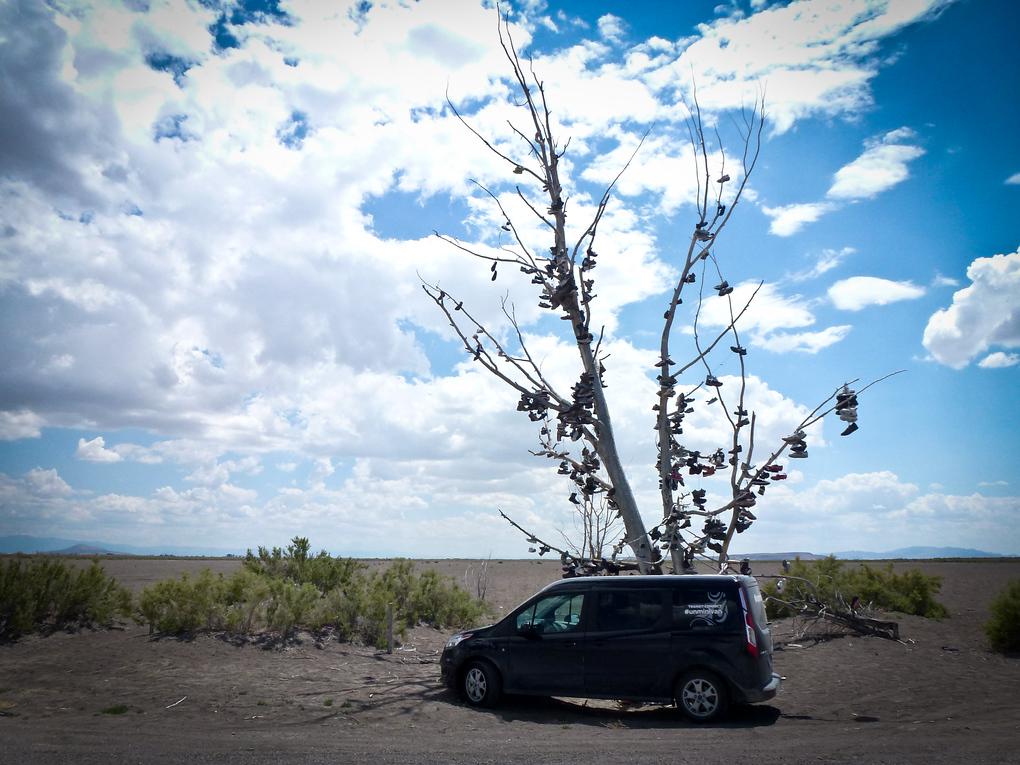 shoe tree hinckley delta utah