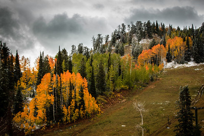 Fall at Powder Mountain