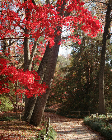 Maymont Park in Autumn