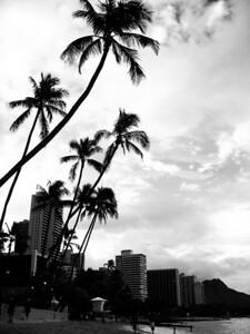 Waikiki Oahu, Hawaii
