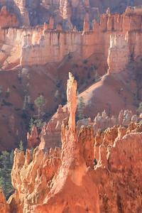 Hoodoo spire, Bryce Canyon