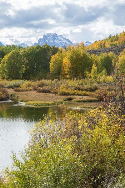 Fall colours, Jackson Lake
