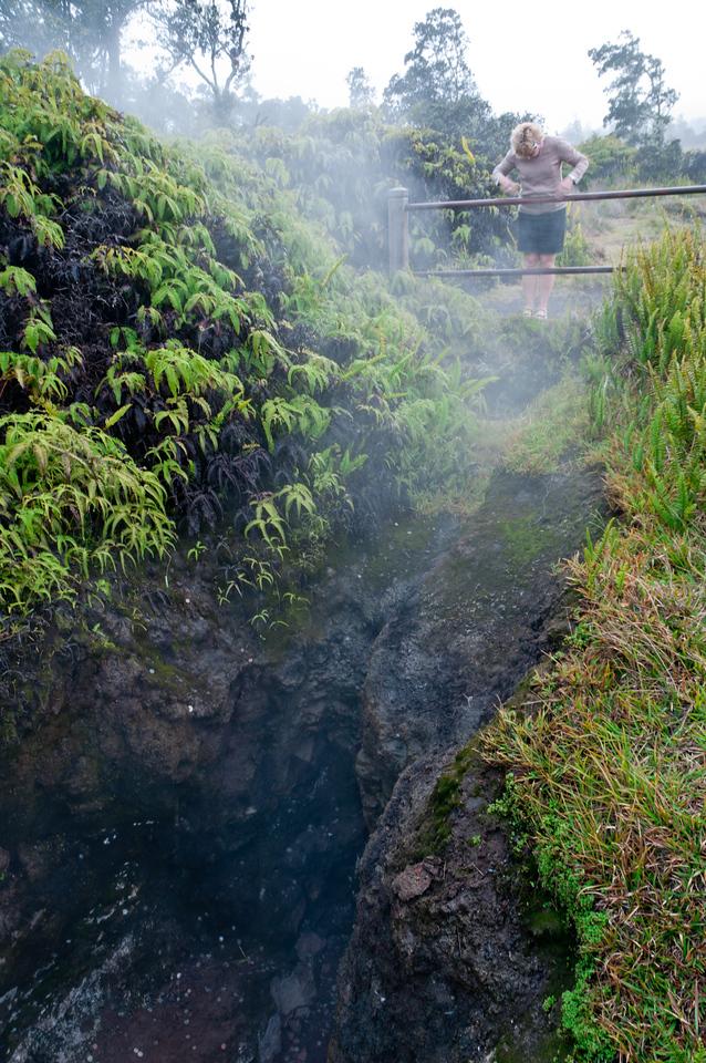 Mist outside the Thurston Lava Tube, volcano tour, Hawaii