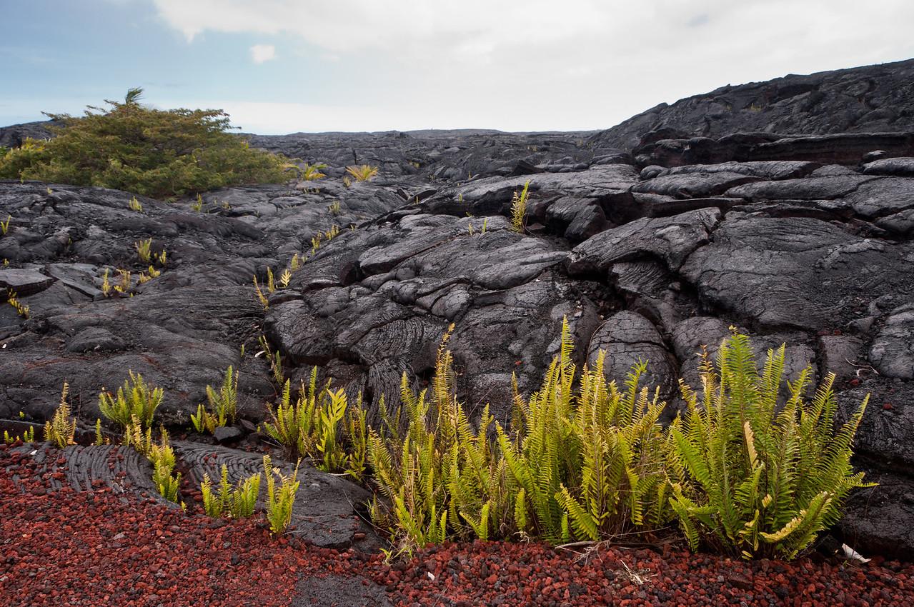 1974 lava flow, volcano tour, Hawaii.