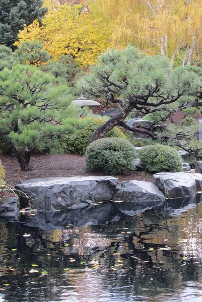 Denver Botanic Japanese Garden