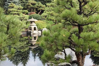 Lantern among pines
