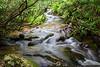 Near Cascade Falls in E.B. Jeffress Park along the Blue Ridge Parkway