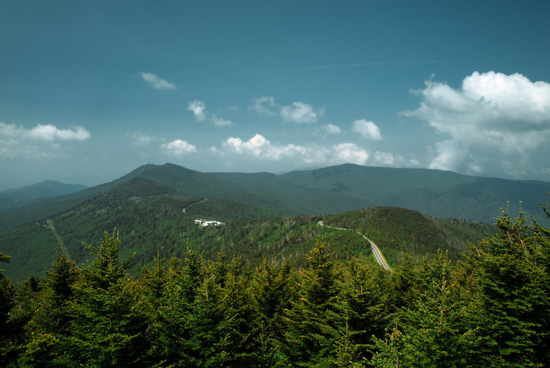 Mt. Mitchell, NC (Yancey County) June 2011