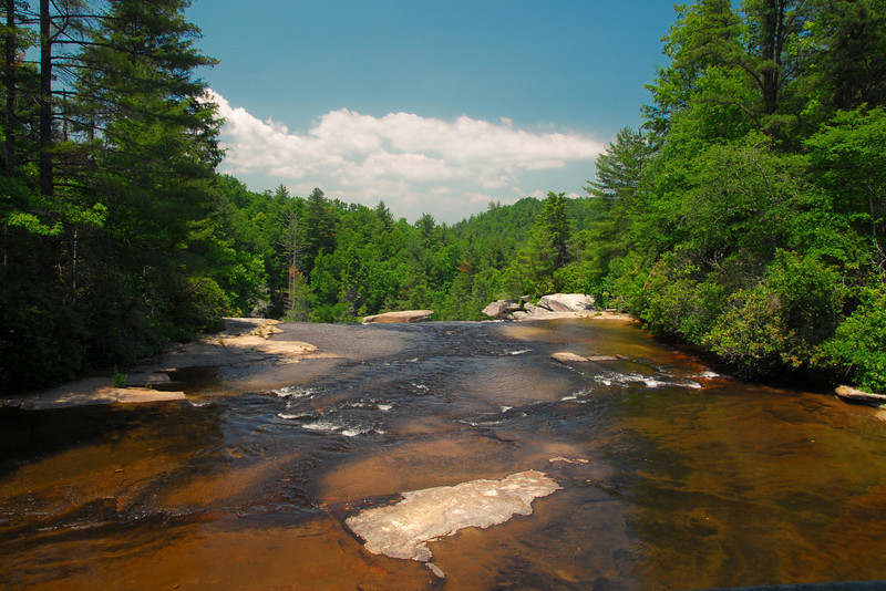 DuPont State Forest, NC (Henderson County) June 2011