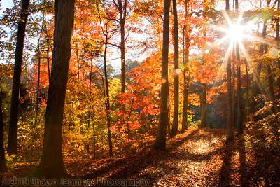 Reedy Creek Park in Charlotte, North Carolina.