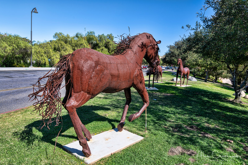 Horse statues in Vista, California.