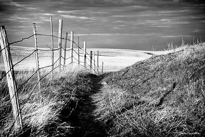 Prairie Fence in western North Dakota