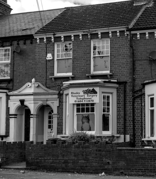 Rhodes Vetenary Surgery,Towcester Road, Far Cotton, Northampton