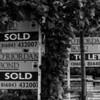 Grange Park Property Market