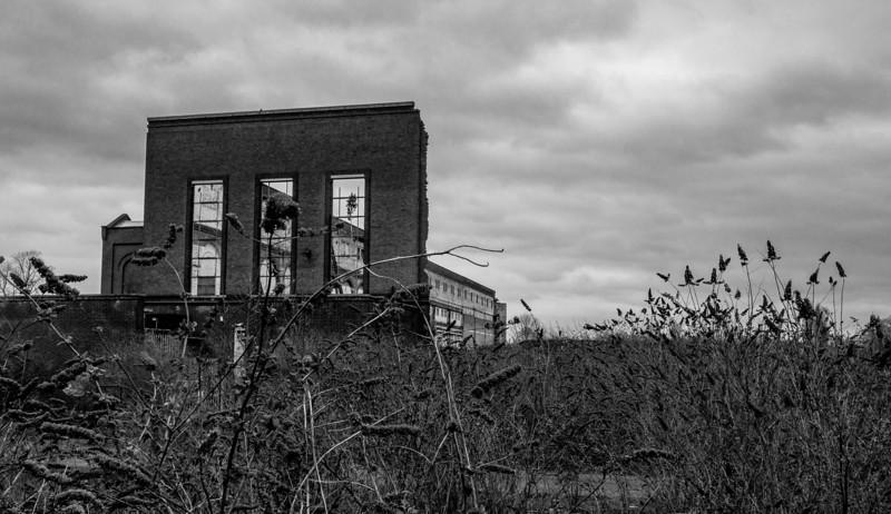 Growth, Nunn Mills Power Station, Northampton