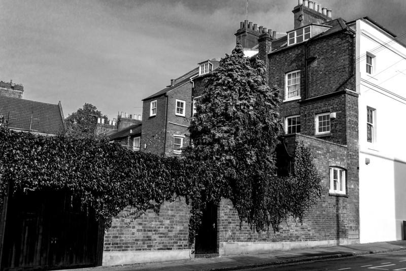 House backs, Adelade Street