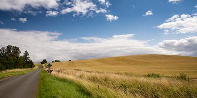 Rolling English Hills