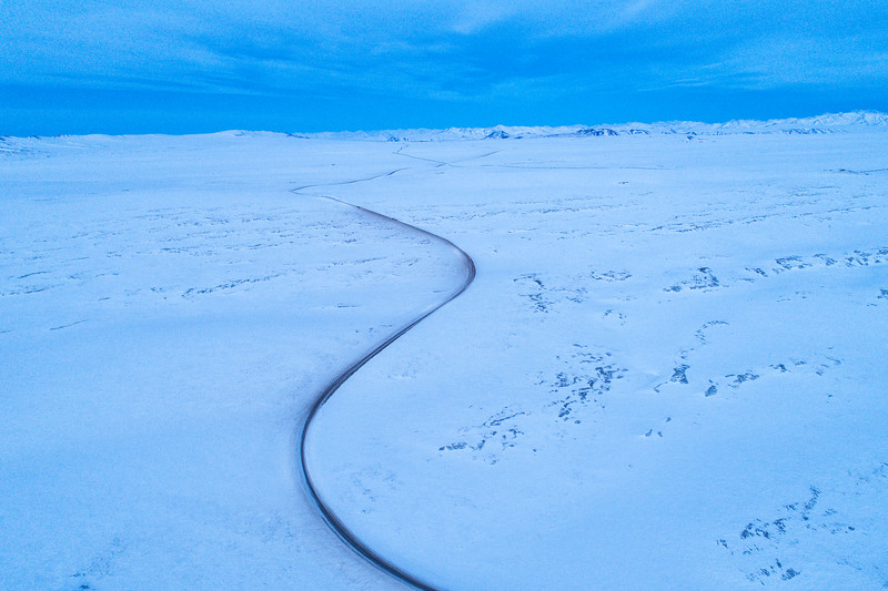 The Dalton Highway, which runs from Fairbanks to the Arctic Ocean, runs through the middle of the Wildlife Conservation Society's wolverine study.