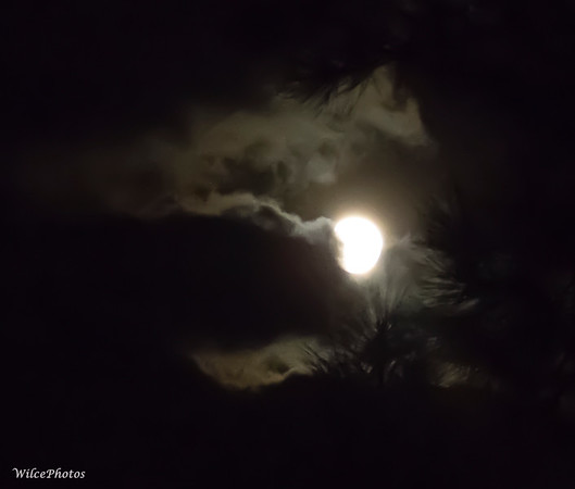 Cloudy Night Moon