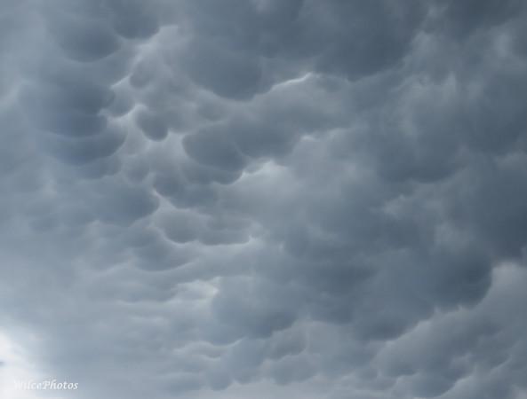 Northern Arizona Monsoon