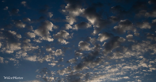 Altocumulus Clouds (Photo #1142)