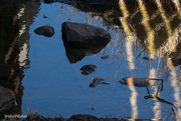 Light and Shadow On Pond