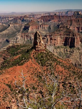 North rim view