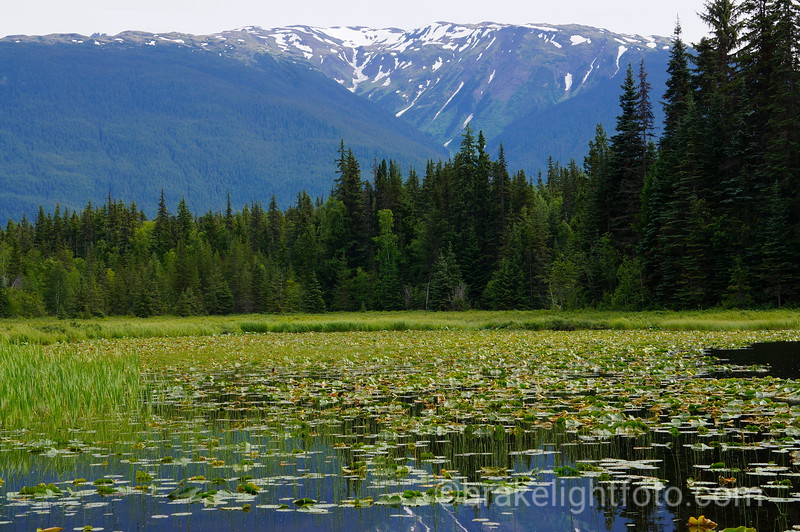 Bonus Lake Recreation Site