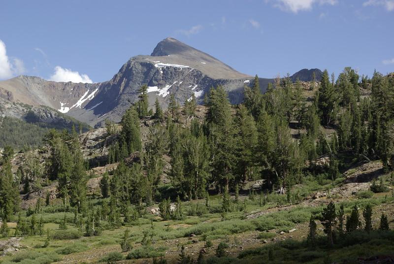 Tioga Pass Area