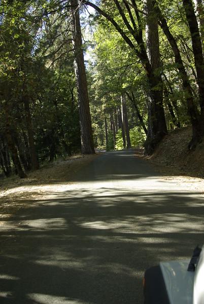 Casa Loma Road, Near Alta, CA