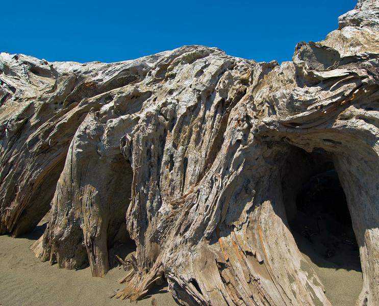 Driftwood Wall - Crab Park