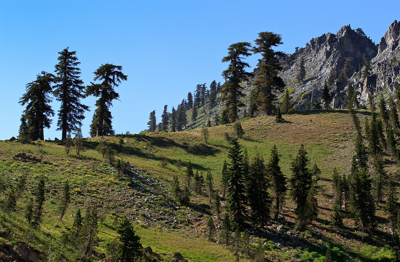 Bee Tree Gap - Headwaters of Long Canyon in Trinity Alps Wilderness