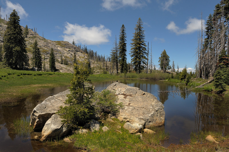 Upper Waterdog Lake