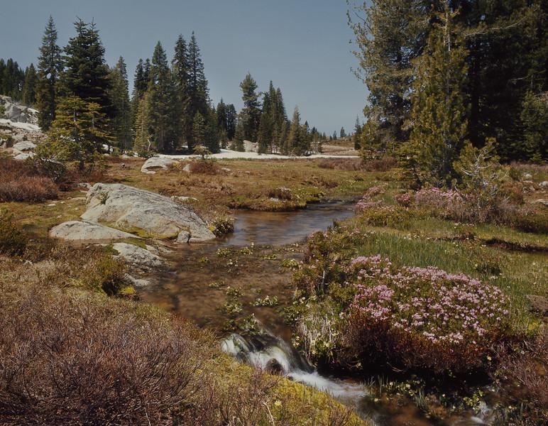 Dot Creek & North Trinity Mtn