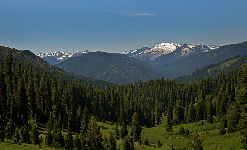 View of High Alps From Steveale Meadows