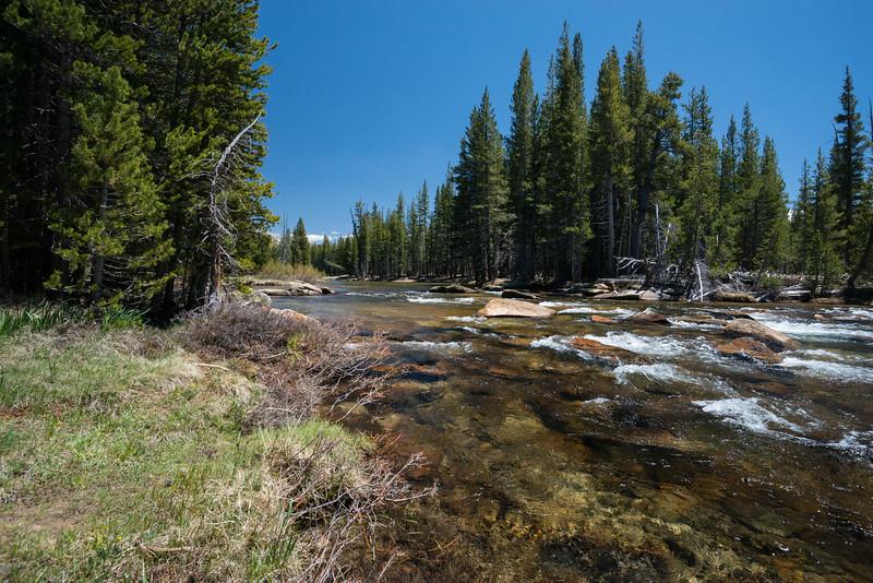 Rapids on the Tuolumne