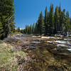 Rapids on the Tuolumne
