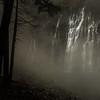 Burney Falls Fog