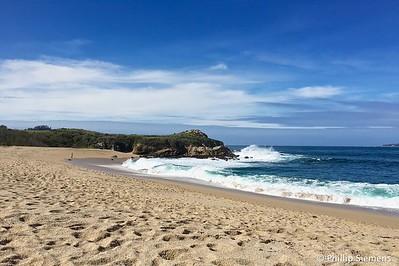 Beach near Pt. Lobos