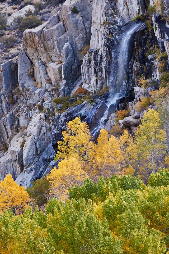 Waterfall Near Bishop Creek