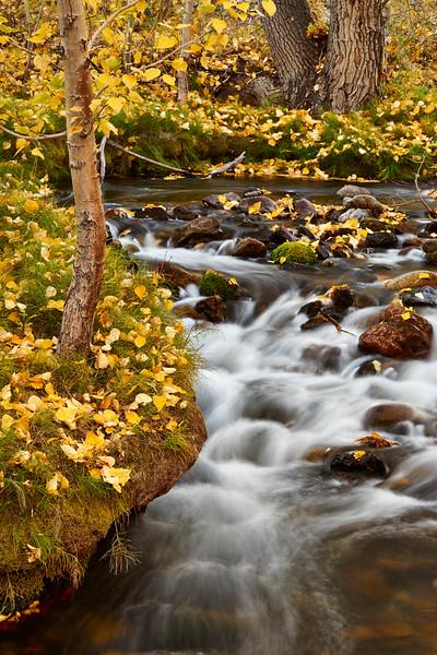 McGee Creek cascade