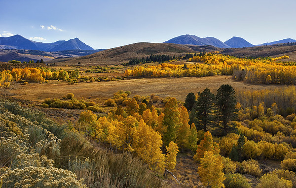 Fall Colors in the Eastern Sierra