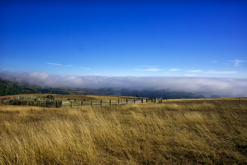 Hillside, Fence and the Russian River and Pacific Coast under fog