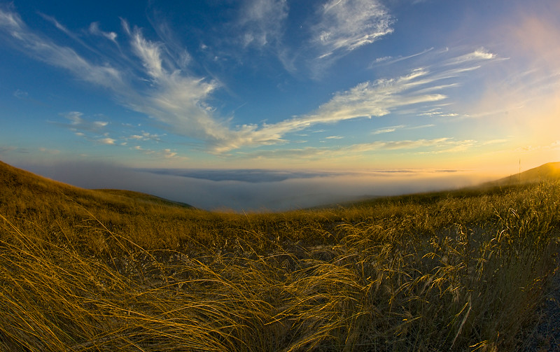Clouds, Grass, and Fog